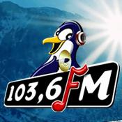 Radio Radio Pinguin 103.6 FM