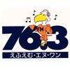 FM N1