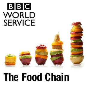 The Food Chain
