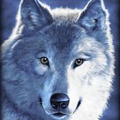 Radio wolfs-radio1