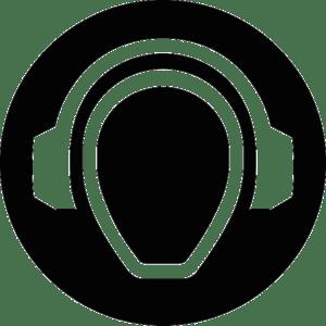 Radio viceradio